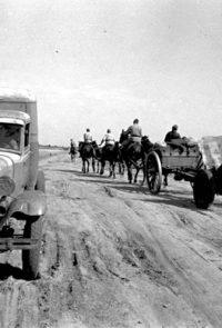 Одна из частей Красной Армии в районе Сталинграда - 1942 г.