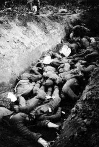 Ров с телами советских военнопленных, умерших от голода и болезней в во временном лагеря содержания - 1941